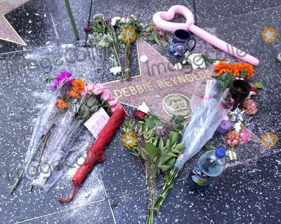 Debbie Reynolds Photo - LOS ANGELES - DEC 30  Fan tributes and official Walk of Fame memorial wreath laid on Debbie Reynolds Star on the Hollywood Walk of Fame on December 30 2016 in Los Angeles CA