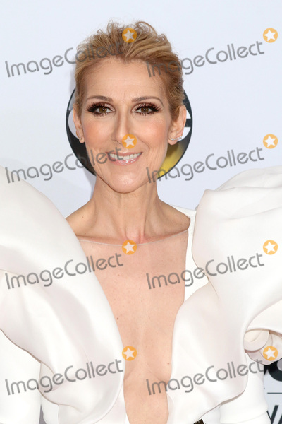 Celine Dion Photo - LAS VEGAS - MAY 21  Celine Dion at the 2017 Billboard Awards Press Room at the T-Mobile Arena on May 21 2017 in Las Vegas NV