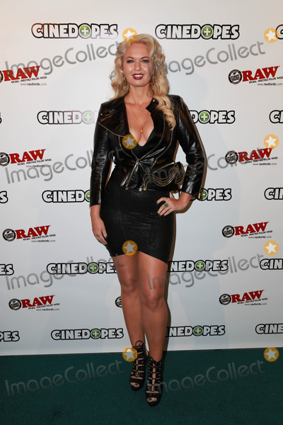 Angeline-Rose Troy Photo - LOS ANGELES - NOV 18  Angeline Rose Troy at the CineDopes Web Series Premiere And Launch Party at the Busbys East on November 18 2014 in Los Angeles CA