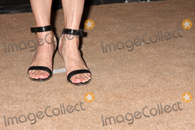 Jeanne Tripplehorn Photo - LOS ANGELES - JUL 29  Jeanne Tripplehorn arrives at the 2013 CBS TCA Summer Party at the private location on July 29 2013 in Beverly Hills CA