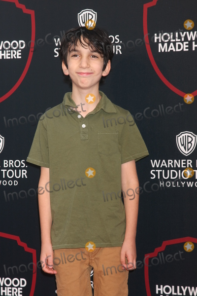 Adam Chernick Photo - LOS ANGELES - JUL 14  Adam Chernick at the Warner Bros Studio Tour Hollywood Expansion Official Unveiling Stage 48 Script To Screen at the Warner Brothers Studio on July 14 2015 in Burbank CA