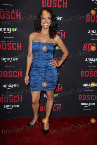 Daya Vaidya Photo - LOS ANGELES - MAR 3  Daya Vaidya at the Bosch Season 2 Premiere Screening at the Silver Screen Theater at the Pacific Design Center on March 3 2016 in West Hollywood CA