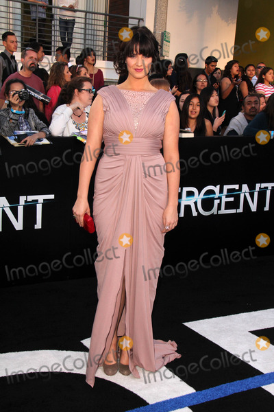 Amy Newbold Photo - LOS ANGELES - MAR 18  Amy Newbold at the Divergent Los Angeles Premiere at Bruin Theater on March 18 2014 in Westwood CA