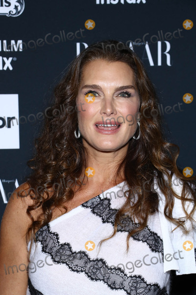 Brooke Shields Photo - Photo by John NacionstarmaxinccomSTAR MAX2017ALL RIGHTS RESERVEDTelephoneFax (212) 995-11969817Brooke Shields at The 2017 Harpers Icons in New York City