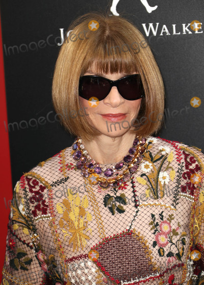Anna Wintour Photo - Photo by John NacionstarmaxinccomSTAR MAX2018ALL RIGHTS RESERVEDTelephoneFax (212) 995-11966518Anna Wintour at the premiere of Oceans 8 in New York City