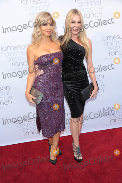 Donna DErrico Photo - Photo by gotpapstarmaxinccomSTAR MAX2017ALL RIGHTS RESERVEDTelephoneFax (212) 995-119612217Sharise Neil and Donna DErrico at The Jameson Animal Rescue Ranch presentation of Napa In Need - A Wildife Relief Benefit For The Animals Of Napa Valley in Beverly Hills CA
