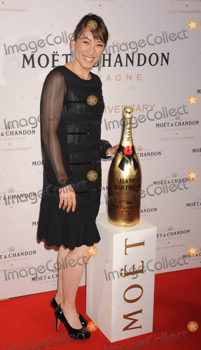 Ai Sugiyama Photo - Photo by Demis Maryannakisstarmaxinccom2013ALL RIGHTS RESERVEDTelephoneFax (212) 995-119682013Ai Sugiyama at the Moet  Chandon 270th Anniversary Celebration(NYC)