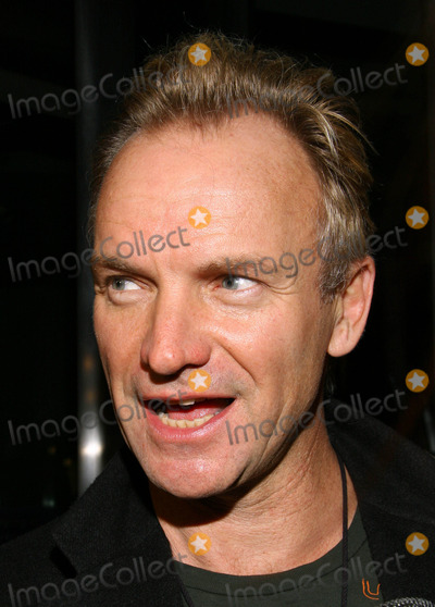 Sting Photo - Photo by Jackson Leestarmaxinccom2005103005Sting at the premiere of Derailed(NYC)