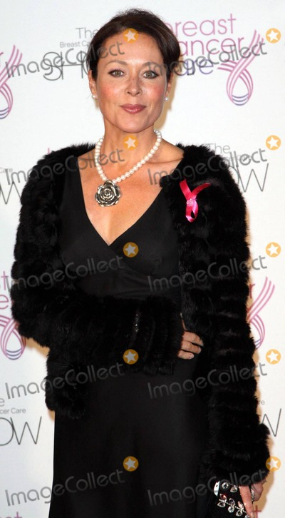 Amanda Mealing Photo - Amanda Mealing at the Breast Cancer Care 2010 Fashion Show at the Grosvenor House Hotel The event which kicked off Breast Cancer Awareness Month featured 24 models (including one man) that have suffered from breast cancer and took to the catwalk for the first time London UK 10610