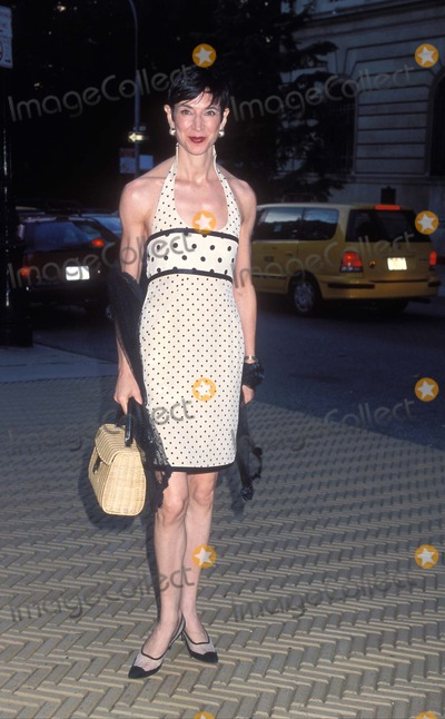 Amy Fine Collins Photo - 242002 New York Coach Celebrate Summer with Cocktails in the Garden Cooper Hewitt Amy Fine Collins Photo by Henry Mcgee Globe Photos Inc K25664hmc