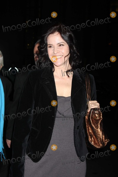 Ally Sheedy Photo - NYC  112910Ally Sheedy at the IFPs 20th Annual Gotham Independent Film Awards at Cipriani Wall StreetPhoto by Adam Nemser-PHOTOlinknet