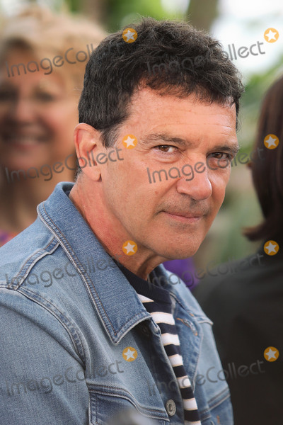 Antonio Banderas Photo - CANNES FRANCE - MAY 18 Antonio Banderas attends the photocall for Pain And Glory (Dolor Y Gloria Douleur Et Gloire) during the 72nd annual Cannes Film Festival on May 18 2019 in Cannes France (Photo by Laurent KoffelImageCollectcom)