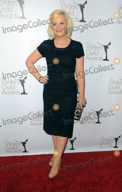 AMY POHLER Photo - Actress Amy Pohler arriving at the 2011 Writers Guild Awards on February 5 2011 in Hollywood California