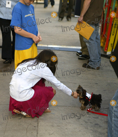 Aliana Lohan Photo - NEW YORK SEPTEMBER 28 2005    Aliana Lohan on the set of Lindsay Lohans new music video with a puppy that has a piece of paper attached to it that says I Love Lindsay