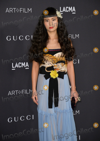 Asia Chow Photo - Asia Chow at the 2015 LACMA ArtFilm Gala at the Los Angeles County Museum of ArtNovember 7 2015  Los Angeles CAPicture Paul Smith  Featureflash