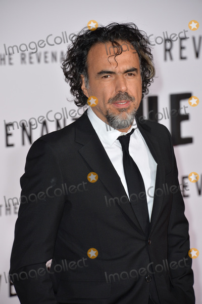 Alejandro GInarritu Photo - Director Alejandro G Iarritu at the Los Angeles premiere of his movie The Revenant at the TCL Chinese Theatre Hollywood December 16 2015  Los Angeles CAPicture Paul Smith  Featureflash