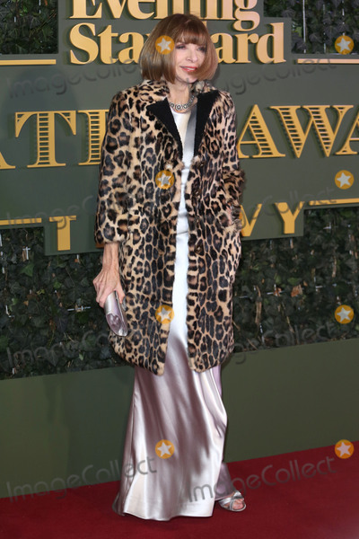 Anna Wintour Photo - Anna Wintour at the London Evening Standard Theatre Awards 2015 at the Old Vic Theatre LondonNovember 22 2015  London UKPicture James Smith  Featureflash