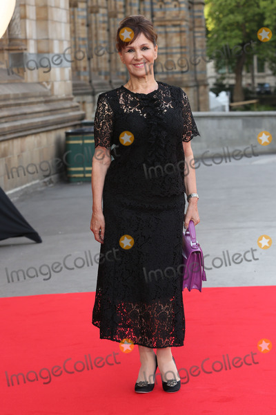 Cinderella Photo - Arlene Phillips at the Believe In Magic Cinderella Ball held at the Natural History Museum London August 10 2015  London UKPicture James Smith  Featureflash