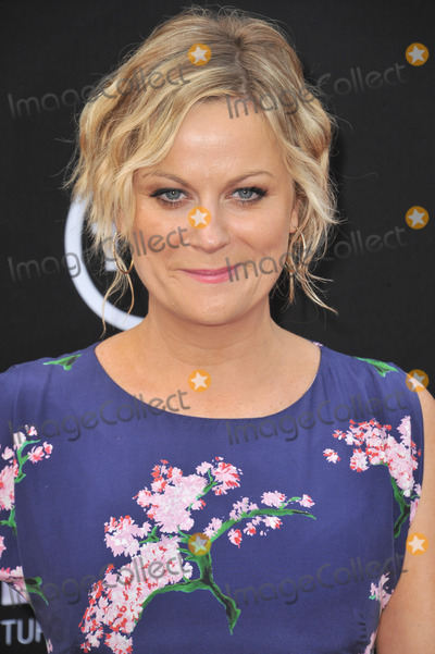 AMY POHLER Photo - Amy Pohler at the 41st AFI Life Achievement Award honoring Mel Brooks at the Dolby Theatre HollywoodJune 6 2013  Los Angeles CAPicture Paul Smith  Featureflash