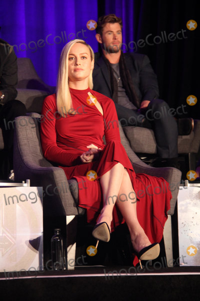 Brie Larson Photo - Brie Larson 04072018 Avengers Endgame Press Conference held at The InterContinental Los Angeles Downtown in Los Angeles CA Photo by Izumi Hasegawa  HollywoodNewsWireco