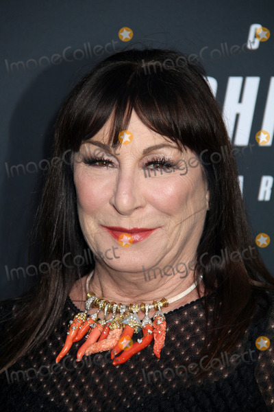 Anjelica Huston Photo - Anjelica Huston 05152019 John Wick Chapter 3 - Parabellum Premiere held at the TCL Chinese Theatre in Hollywood CA Photo by Kazuki Hirata  HollywoodNewsWireco