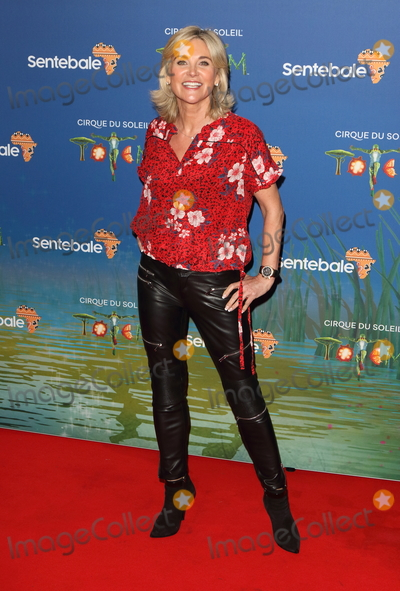 Anthea Turner Photo - London UK  Anthea Turner at Totem by Cirque du Soleil Press Night at the Royal Albert Hall Kensington Gore London on January 16th 2019Ref LMK73-J4210-170119Keith MayhewLandmark MediaWWWLMKMEDIACOM