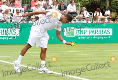 Jo Wilfried Tsonga Photo - London UK Jo Wilfried Tsonga playing against Tommy Haas at BNP Paribas Tennis Classic at Hurlingham Club London 19th June 2013Ref LMK73-44503-200613Keith MayhewLandmark Media WWWLMKMEDIACOM