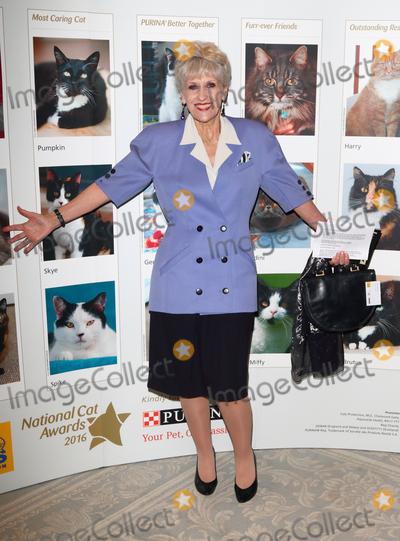 Anita Dobson Photo - LondonUK  Anita Dobson at  Cat Protections National Cat Awards at the Savoy Hotel London 4th August 2016 RefLMK73-61249-050816  Keith MayhewLandmark Media WWWLMKMEDIACOM