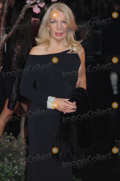 Amanda Nevill Photo - London UK Amanda Nevill  at BFI London Film Festival Closing Gala and World Premiere of Saving Mr Banks at the Odeon Leicester Square London October 20th 2013Ref LMK326-45615-211013Matt LewisLandmark MediaWWWLMKMEDIACOM