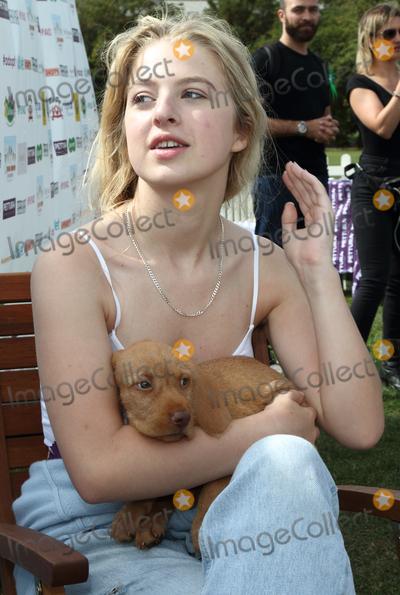 Anais Gallagher Photo - London UK 030916Anais Gallagher at PupAid Puppy Farm Awareness Day 2016 at Primrose Hill London3 September 2016Ref LMK73-00000-040916Keith MayhewLandmark Media WWWLMKMEDIACOM