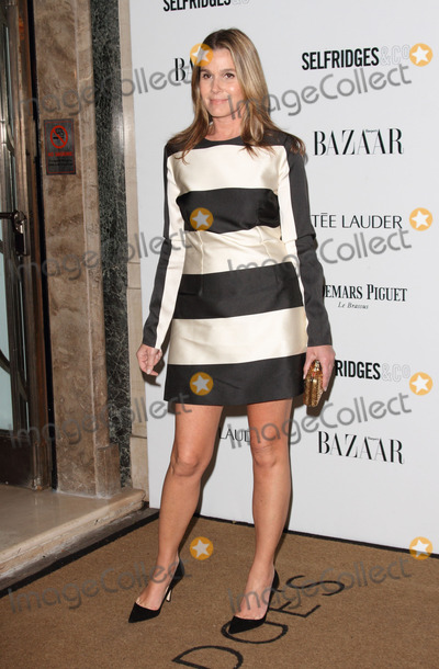 Aerin Lauder Photo - London UK Aerin Lauder at Harpers Bazaar Women of the Year Awards 2013 at Claridges London November 5th 2013Ref LMK73-45856-071113Keith MayhewLandmark MediaWWWLMKMEDIACOM