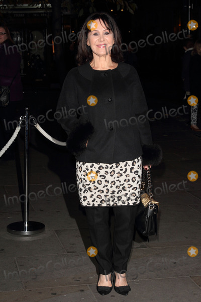 Arlene Phillips Photo - London UK Arlene Phillips at the English National Ballet Annual Christmas VIP Party at the St Martins Lane Hotel and London Coliseum 12th December 2013 Ref LMK73-46196-131213Keith MayhewLandmark Media WWWLMKMEDIACOM
