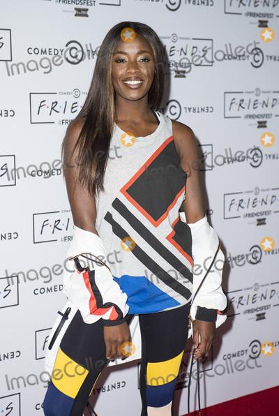Aj Odudu Photo - London UK AJ Odudu at the closing party of Comedy Central UKs Friends Fest at Clissold Park on September 14 2017 in London EnglandRef LMK386-J731-150917Gary MitchellLandmark MediaWWWLMKMEDIACOM