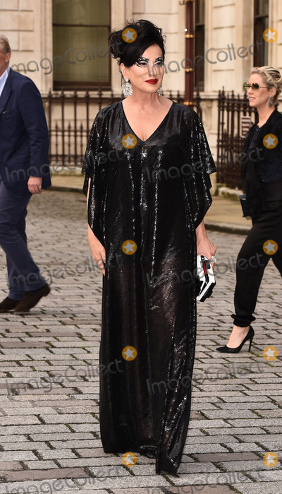 Nancy Dellolio Photo - London UK Nancy DellOlio at The Royal Academy Of Arts Summer Exhibition VIP Preview held at The Royal Academy Of Arts Burlington House Piccadilly London on Tuesday 7 June 2016 Ref LMK392 -60292-080616Vivienne VincentLandmark Media WWWLMKMEDIACOM