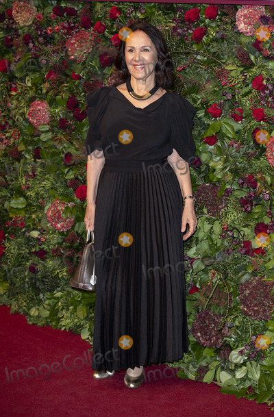 Arlene Phillips Photo - London UK Arlene Phillip  at the 65th Evening Standard Theatre Awards London Coliseum London England on the 24tht November 2019Ref LMK386-J5854-251119Gary MitchellLandmark MediaWWWLMKMEDIACOM