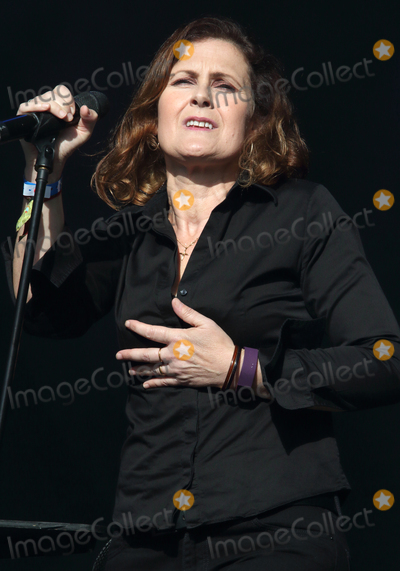 Alison Moyet Photo - Lulworth Castle Dorset UK Alison Moyet   at the Camp Bestival 2015 musical festival at Lulworth Castle Dorset 31st July -2nd August 2015 Day 3 Ref LMK73-57933-040815Keith MayhewLandmark Media WWWLMKMEDIACOM