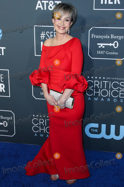 Annie Potts Photo - SANTA MONICA LOS ANGELES CA USA - JANUARY 13 Annie Potts arrives at the 24th Annual Critics Choice Awards held at the Barker Hangar on January 13 2019 in Santa Monica Los Angeles California United States (Photo by Xavier CollinImage Press Agency)