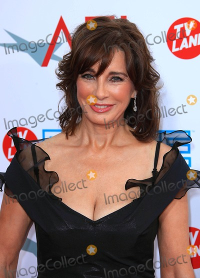 Anne Archer Photo - Anne Archer Actress the 37th Afi Life Achievement Award Held at Sony Studios in Culver City California 06-11-2009 Photo by Graham Whitby Boot-allstar-Globe Photos Inc