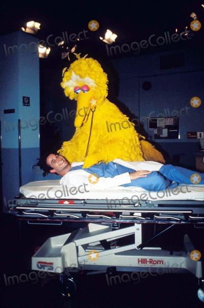Big Bird Photo - Noah Wyle Taping Episode of Sesame Street at Kaufman Astoria Studio Noah Wyle with Big Bird 1996 Photo by Bruce Cotler-Globe Photos