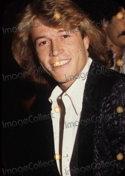 Andy Gibb Photo - Andy Gibb G9598 Supplied by Globe Photos Inc