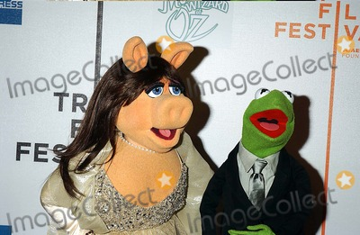 Miss Piggy Photo - 4th Annual Tribeca Film Festival Presents the Screening of the Muppets Wizard of Oz Tribeca Performing Arts Center New York City 04-27-2005 Photo Ken Babolcsay-ipol-Globe Photos Inc 2005 Miss Piggy Kermit the Frog