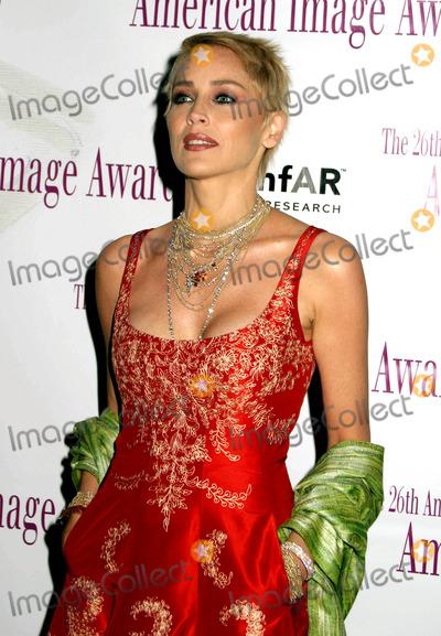 Sharon Stone Photo - the 26th Annual Aafa American Image Awards at the Grand Hyatt New York City 05032004 Photo by Paul SchmulbachGlobe Photosinc Sharon Stone