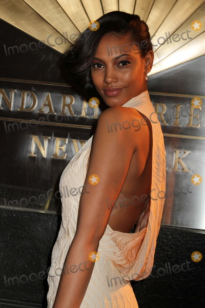 Ariel Meredith Photo - New Yorkers For Children Ninth Spring Dinner Dance-a Fools Fete the Mandarin-oriental Hotel NYC April 10 2012 Photos by Sonia Moskowitz Globe Photos Inc 2012 Ariel Meredith
