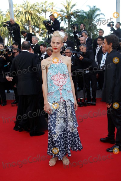 Aymeline Valade Photo - Aymeline Valade Attend the Premiere of Carol During the 68th Annual Cannes Film Festival at Palais Des Festivals in Cannes France on 17 May 2015 Photo Alec Michael