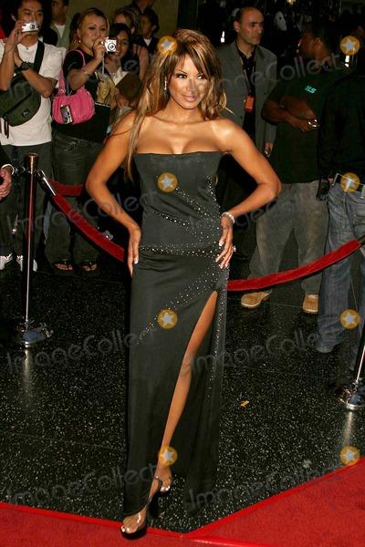 Traci Bingham Photo - 2005 World Music Awards-arrivals Kodak Theatre Hollywood CA 08-31-2005 Photo Clinton Hwallace-photomundo-Globe Photos Inc Traci Bingham