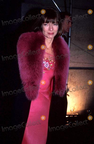 Anna Wintour Photo - Sd0208 Cfda Awards Anna Wintour Photosonia MoskowiwtzGlobe Photos Inc