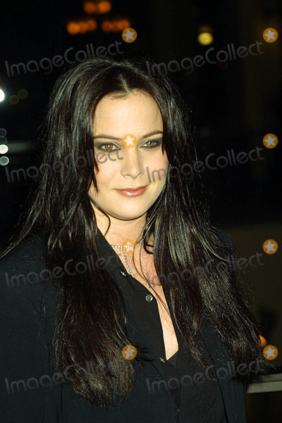 Liza Snyder Photo - Cbs and Upn Winter Press Tour Stars Party Highlands (Hollywood and Highland) Hollywood CA 01132003 Photo by Ed GelleregiGlobe Photos Inc 2003 Liza Snyder