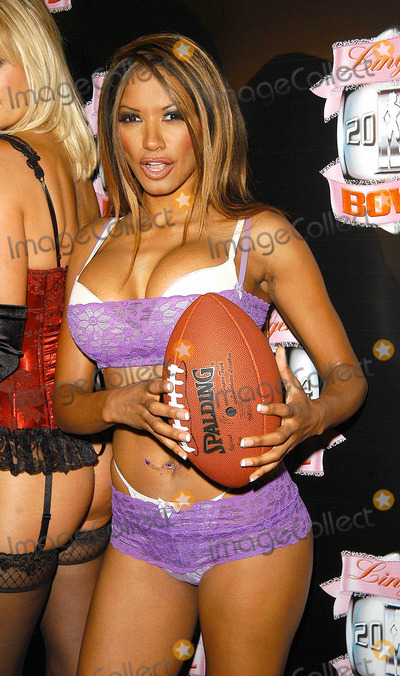 Traci Bingham Photo - - Angie Everhart Nikki Ziering and Traci Bingham Unveils Plans For Lingerie Bowl 2004 - Quixote Studios West Hollywood CA - 06252003 - Photo by Jonathan Friolo  Globe Photos Inc 2003 - Traci Bingham