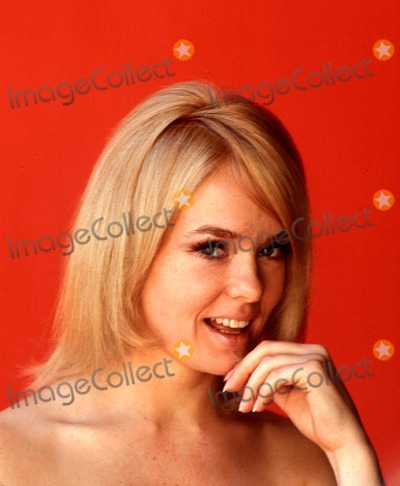 Joey Heatherton Photo - Joey Heatherton Photo by OrlandoGlobe Photos Inc