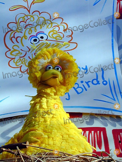 Big Bird Photo - Annual Macys Thanksgiving Parade New York City  November 22 2001 Photo by Bruce Cotler Photo by Bruce CotlerGlobe Photos Inc